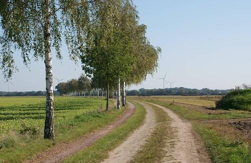 Weg von Dannefeld nach Peckfitz