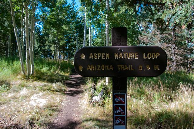 Trails: Aspen Loop No. 73