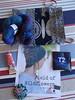 Tassie Stitchers Single Skein swap 2015