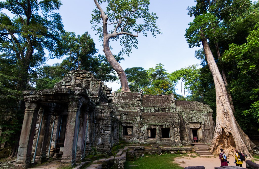 Ta Prohm Angkor-2754