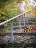 October Stairs