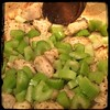 #Homemade #ChickenSlop #CucinaDelloZio - add celery