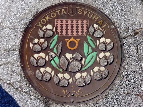 Yokota Shimane, manhole cover 2 (島根県横田町のマンホール2)