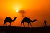 Thar, Jaisalmer