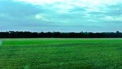 Llanuras del Poitou - Photo of Vallans
