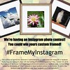 We're having an Instagram photo contest!