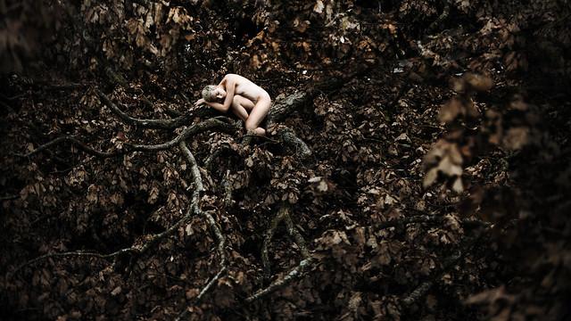 laura zalenga - fall again