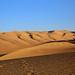 Dune buggying in Usaca, Peru by Fernando Cuevas
