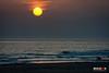 El galgo Lucas. Playa de la Barrosa. by Miguel Angel SGR
