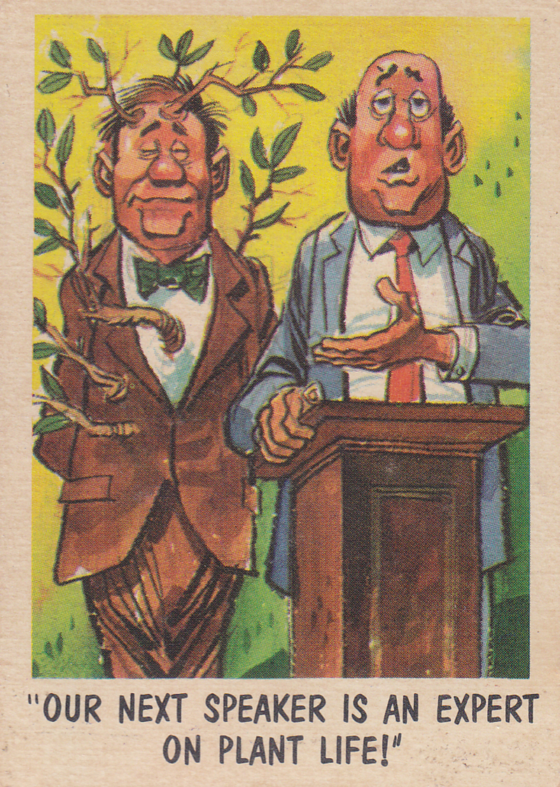 """You'll Die Laughing"" Topps trading cards 1959,  illustrated by Jack Davis (13)"