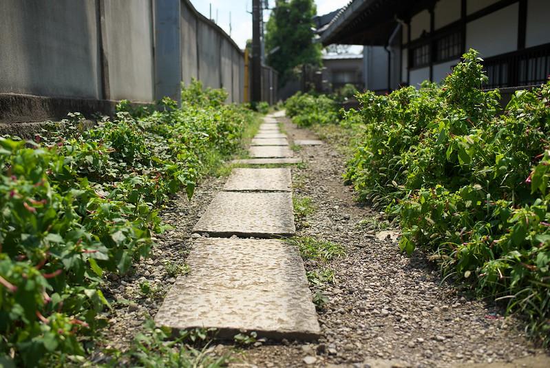 東京路地裏散歩 谷中 2015年9月12日