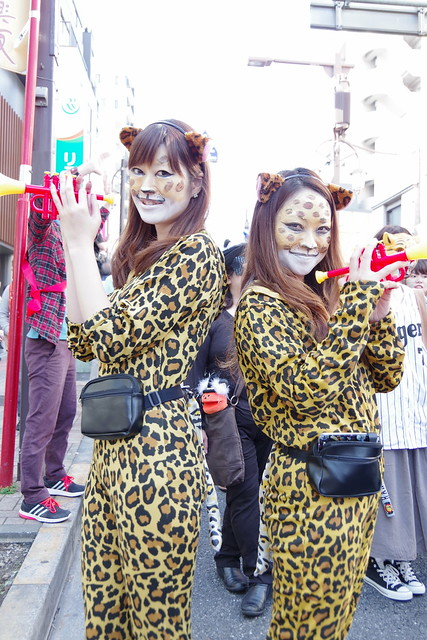 Cat's Halloween Parade in Kagurazaka 2015 22