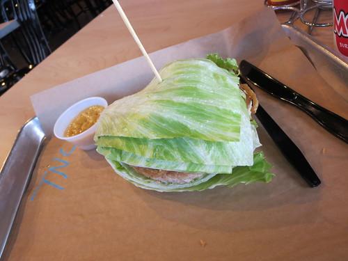 Turkey iceburger