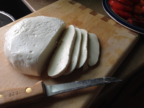Fresh homemade mozzarella
