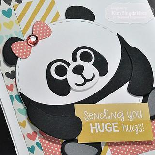 TE Roly Poly Panda CloseUp