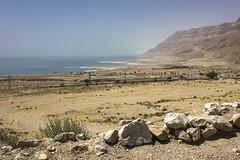 Dead Sea & Jordan Rift Valley 013