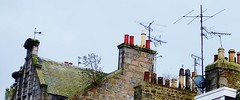 Roof Garden among chimney pots