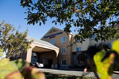 Fairfield Inn through the bushes