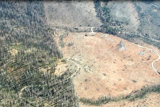 Rim fire logging aerial