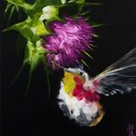 Stephanie Aguilar 3 - Arvada Fine Art Market 2016
