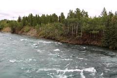 Yukon River Rapids