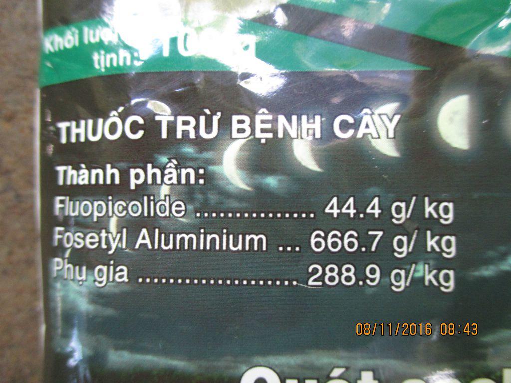 thuoc diet tru benh suong mai gay vang la tren cay hoa hong (3)