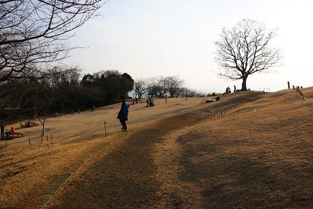 20150211-曽我丘陵-0311.jpg