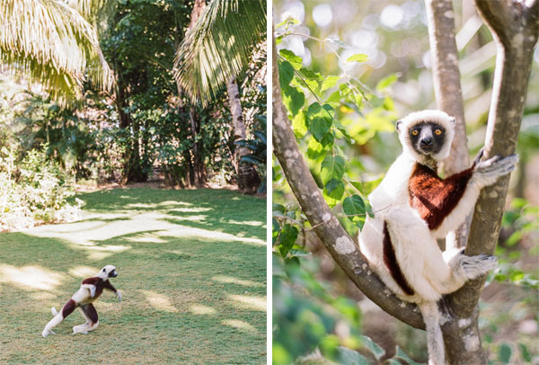 RYALE_Madagascar_Blog3_012