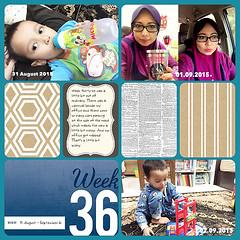 Week 36a-web