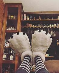 Grow! #bearshoes #shoes #bears #osito #MeEstoyPoniendoGordoComoOso