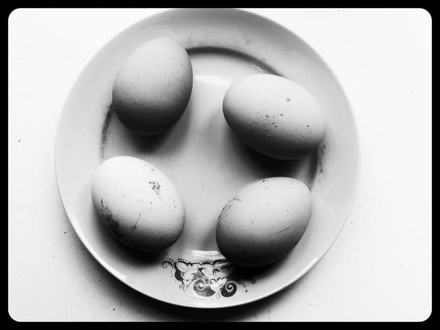 яйца чёрно-белые | Хорошо.Громко.