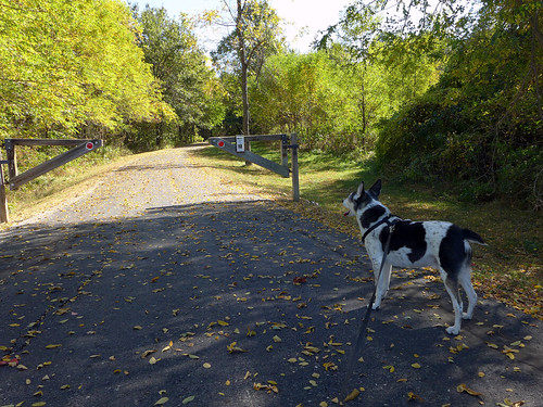 2015-10-14 - Walking the Anita Gorman Trail - 0020 [flickr]