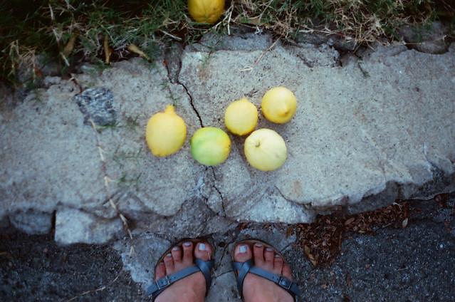 lemon loot