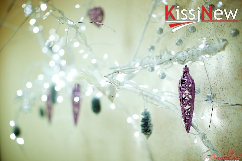 """Зал торжеств """"KissNew""""   > Предновогодний вечер All Inclusive в зале торжеств KissNew !!!"""