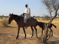 Chad's Sahel Region