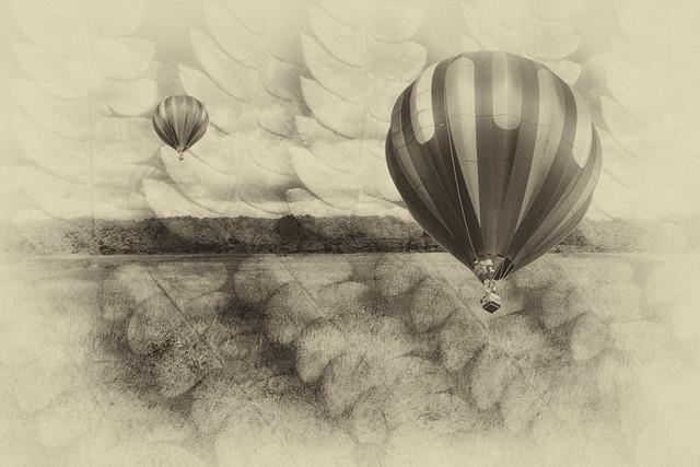 IMG_1652 Balloons BW
