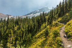Trail to Mt. Baker