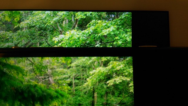 Xperia Z4 Tablet vs Xperia Z2 写真閲覧 (04)
