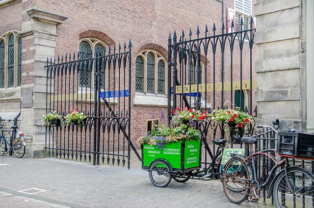 Leiden university, Holland