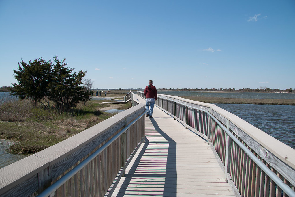 Ferry Landing area at Assateague