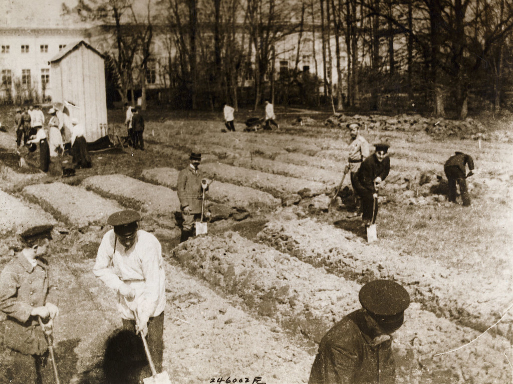 Czar Nicholas II and family gardening at Alexander Palace during internment at Tsarskoe-Selo, 1917.