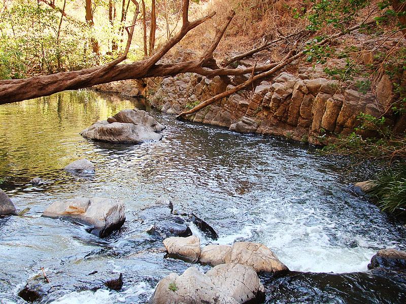 Paisaje río