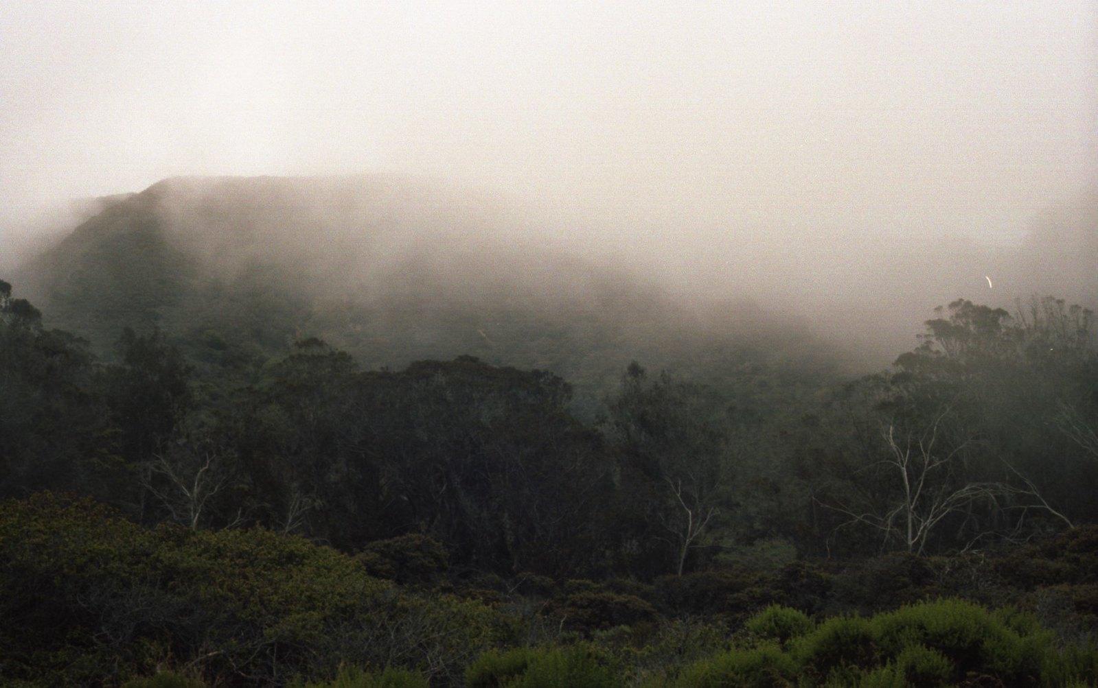 misty start