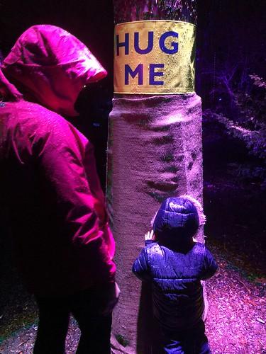Morton Arboretum Illuminations Rain Disaster