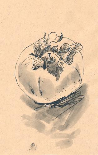 Sketchbook #93: Monochromatic Persimmons