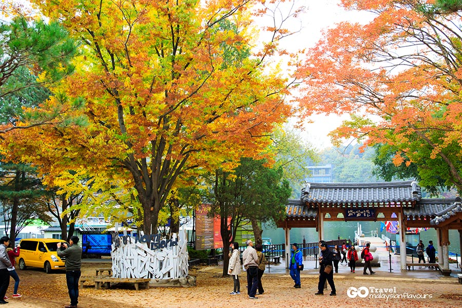 seoul-6d5n-how-to-go-nami-island-from-seoul-south-korea