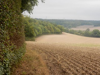 Chiltern fields