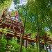 The Zojoji Temple hall and bamboos in the afternoon,Tokyo,Japan : 東京増上寺、午後のお堂と竹