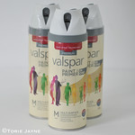 Valspar Paint & Primer spray paint in white