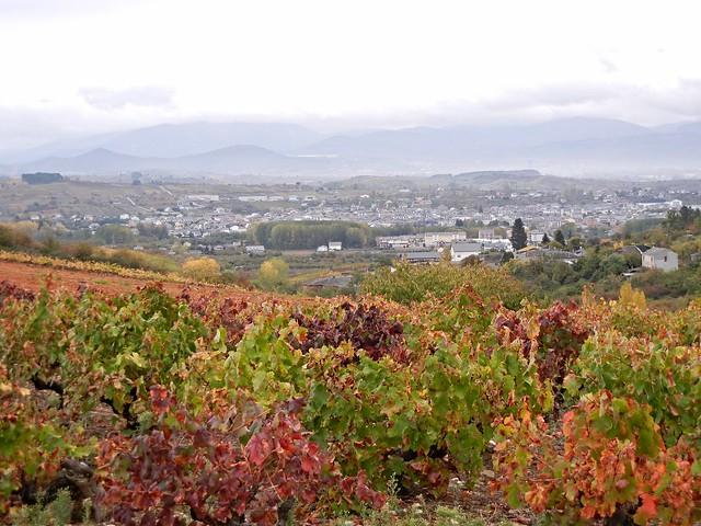 Ponferrada to Villafranca del Bierzo